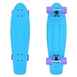 "Cruiser 27"" Fish Skateboards Bleu/Silver/Lavande"